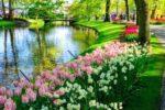 Dutch Public Holidays-featured
