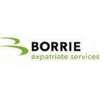 Tax Advisors in the Netherlands-Borrie