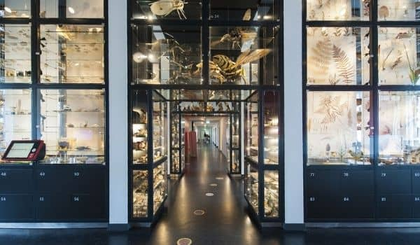 things to do in tilburg-Natuurmuseum Brabant