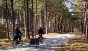 10 Most Stunning Bike Routes in The Netherlands