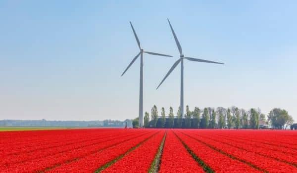 Beautiful Bike Routes in the Netherlands Keukenhof Tulip Fields