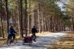 Stunning Bike Routes in the Netherlands-featured image